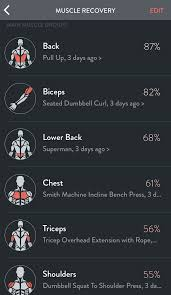 Muscle Recovery Time Chart Muscle Recovery Fitbods Help Center