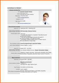 Sample Curriculum Vitae For Job Application Cv Job Application Example Inspiration 4 Example Of Curriculum Vitae