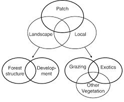 Venn Diagram Of Eastern Church And Western Church Conceptual Venn Diagram That Identifies The Investigated
