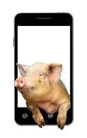 Risultati immagini per telefono maiale