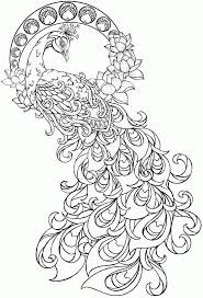 Peacock Coloring Page Coloring Pages For Kids And For Adults