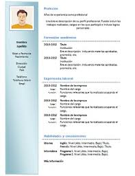 Formato De Curriculum Vitae Para Rellenar Chile Plantillas
