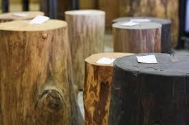 image of stump stools from urban tree salvage