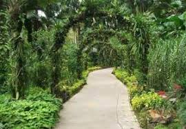 Small Picture Tropical Garden Design Ideas Uk thorplccom tropical garden design