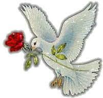 Paloma de la paz gif 9 » GIF Images Download