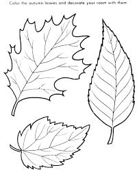 Fall Leaf Printable Templates In C Example Fall Leaf Outline Clip
