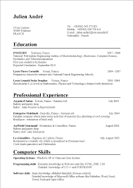 Job Resume Of Job Application