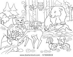 Small Picture Skunk Stock Images Royalty Free Images Vectors Shutterstock