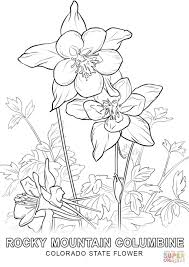 Small Picture Colorado State Flower coloring page Free Printable Coloring Pages