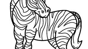 Small Picture Zebra Coloring Pages Clipart Panda Free Clipart Images