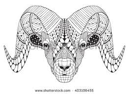 Small Picture Bighorn Sheep Stock Images Royalty Free Images Vectors