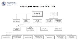 Updated Organizational Chart Of Bureau Of Customs Uscis Organizational Chart Uscis