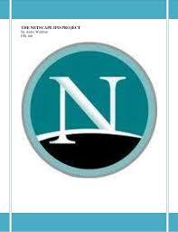 Andre Waldron Netscape Ipo Project Fin 160