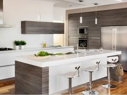 Small Picture kitchen cabinets Amazing Cheap Kitchen Renovations