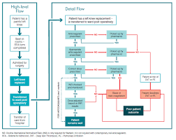 Clinical Data Management Flow Chart Clinical Excellence Commission Flow Charts