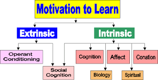 educational psychology interactive motivation in current literature needs are now viewed as dispositions toward action i e they create a condition that is predisposed towards taking action or making