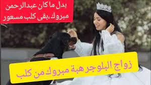 زواج البلوجر هبة مبروك من كلب عملت حفل زفافها على كلب - YouTube