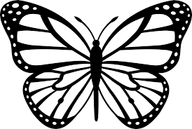 Small Picture Lovely Monarch Butterfly Coloring Pages 42 For Coloring For Kids