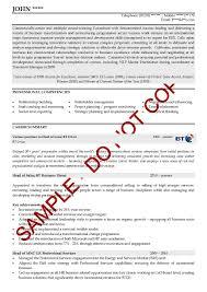 executive cv examples the cv store cv review