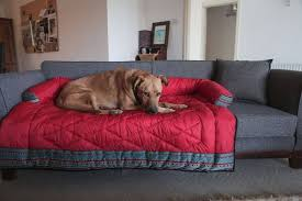 custom made couch protector dog couch