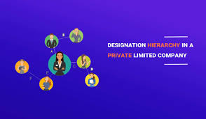 Read About Designation Hierarchy In A Private Limited