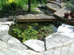 backyard fish incredible ponds decorating ideas for patio eclectic design ideas with incredible backyard fish pond