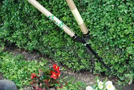 M  Product Image Hedge Shears Okatsune 230 Long Handled Longbladed
