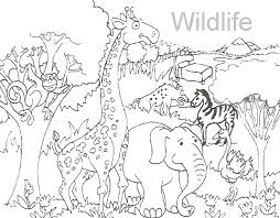 Small Picture 1 10gif On Wildlife Coloring Pages 4 And creativemoveme