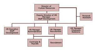 hr diagram   hr chart   human resources   hr analysis   hr diagram    notices  hr organizational