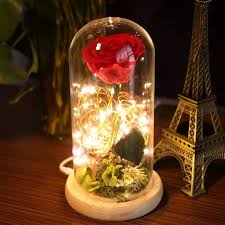 Para Ella Preserved Fresh <b>Rose</b> Flower with Fallen Petals in Glass ...