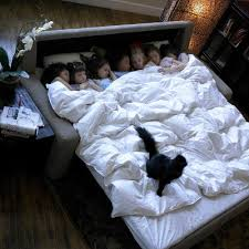 king sofa bed. Lovable King Size Sleeper Sofa With Beautiful True  Bed Scott Jordan King Sofa Bed