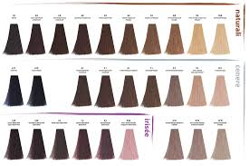 Kaaral Baco Color Chart Kemon Hair Products Menhairstylesbeam Me