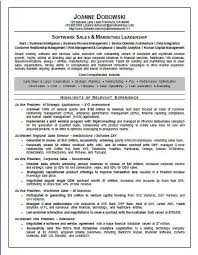 Sales Executive Sample Resume Software Sales Executive Resume Examples Pinterest Resume