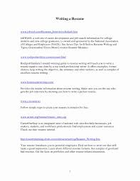 Inspirational What To Write In The Objective Section A Resume Unique