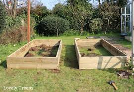 tips on building raised garden beds including gui on the best sizes types of wood