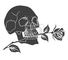 Fototapeta Lidská Lebka Má V Zubech Růže černá Silueta Tetování Vektorové