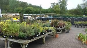 studley garden centre warwickshire