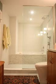 Bathroom Tiny Bathroom Solutions Bathroom Shower Designs Small