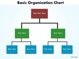 Diagram Of Organizational Chart Marketing Diagram Basic Organization Chart Editable Sales