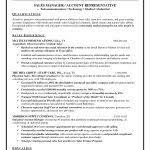 Inside Sales Resume Beautiful Sales Resume Summary Examples Examples ...