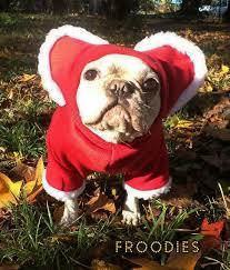 French Bulldog Boston Terrier Pug Dog Froodies Hoodies Christmas ...
