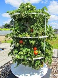 hydroponic garden tower. Plain Hydroponic Outdoor Hydroponic Garden Towers  Google Search For Hydroponic Garden Tower