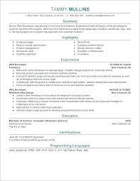 Creative Web Designer Resume Objective Samples 3 Developer Sample ...