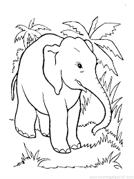 Printable Elephant Coloring Pages Elephant Coloring Sheet Baby