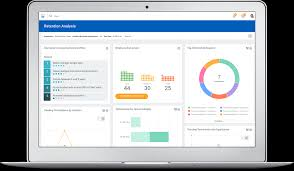 Workday Chart Hcm Reporting And Analytics Workday