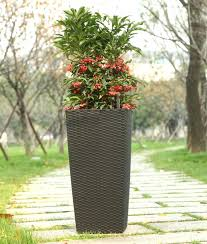vases design ideas large outdoor planters the worm that turned flower pots big lots ceramic plant huge plant pots large outdoor