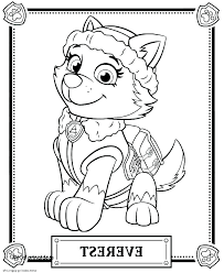 Coloring Pages Free Paw Patrol Skye Coloring Pages Colouring Chase