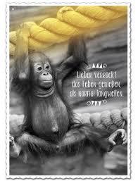 Sprüche Zum Genießen Des Lebens Marketingfactsupdates