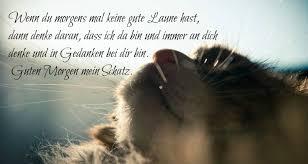 Guten Morgen Bilder Kostenlos Verliebte Denke An Dich Katze Guten