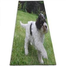 Cavachon Puppy Weight Chart Amazon Com Yoga Mat Cute Stunning Cavachon Puppies